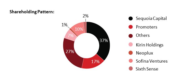 Bira91 shareholding pattern
